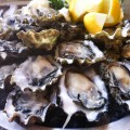 the fish shack buck a shuck oysters gastrofork