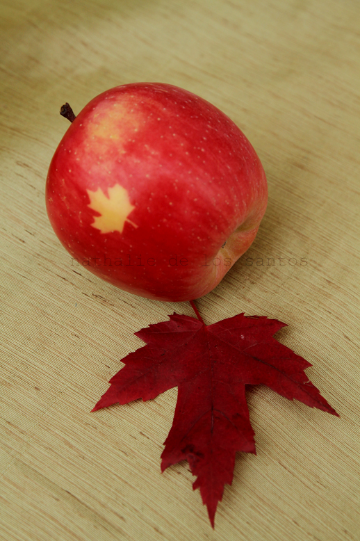 I love Canadian apples!