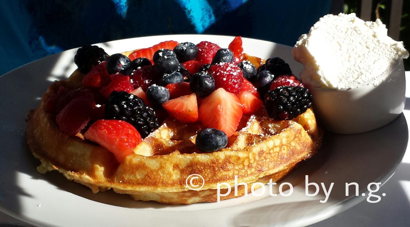 PicsArt_il lupino waffle