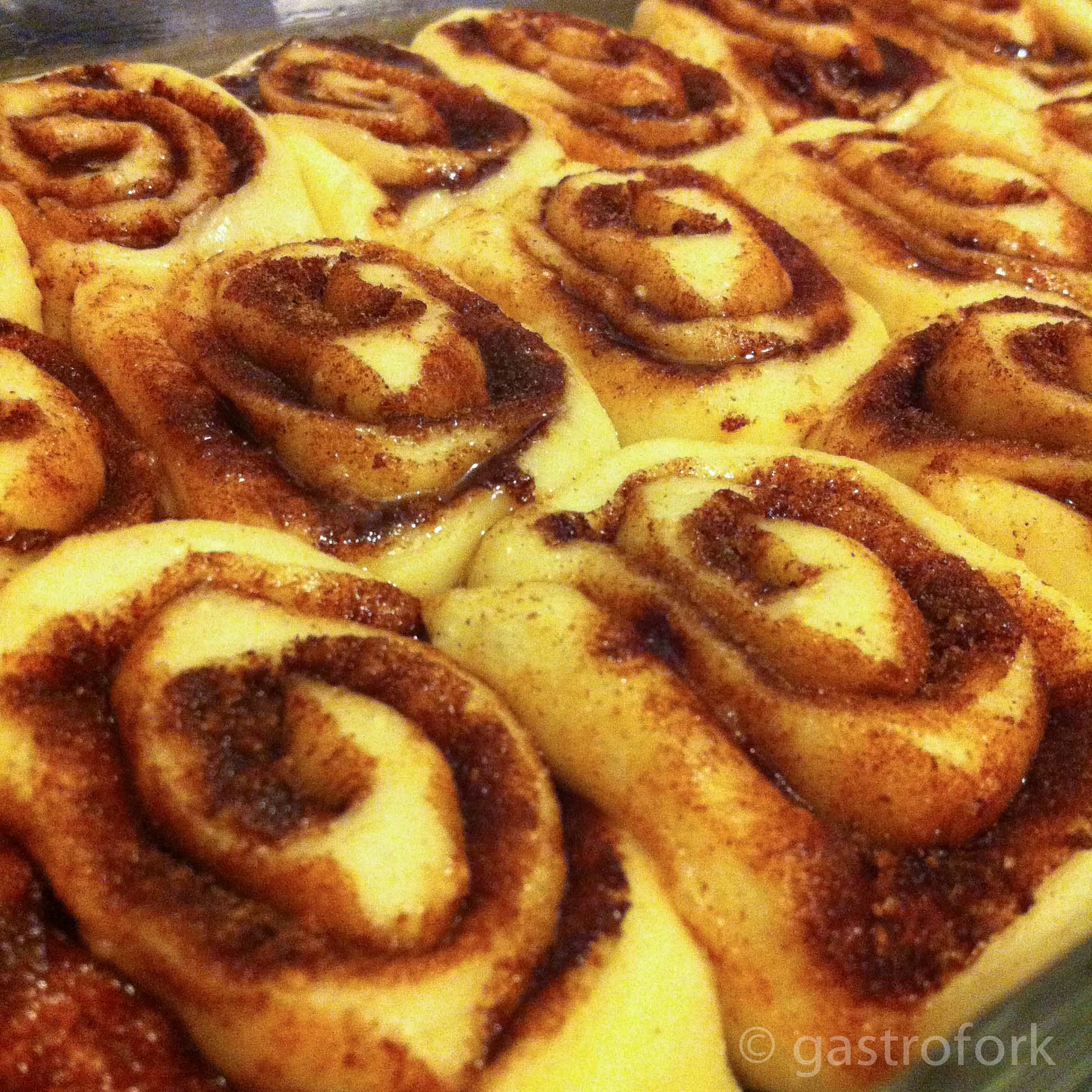 Easy, Soft Cinnamon Roll Recipe | gastrofork | Vancouver ...
