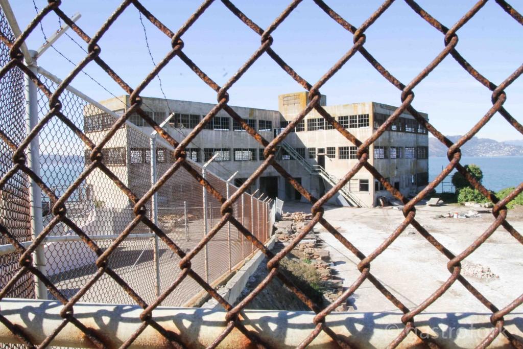 GFSF_alcatraz-9851