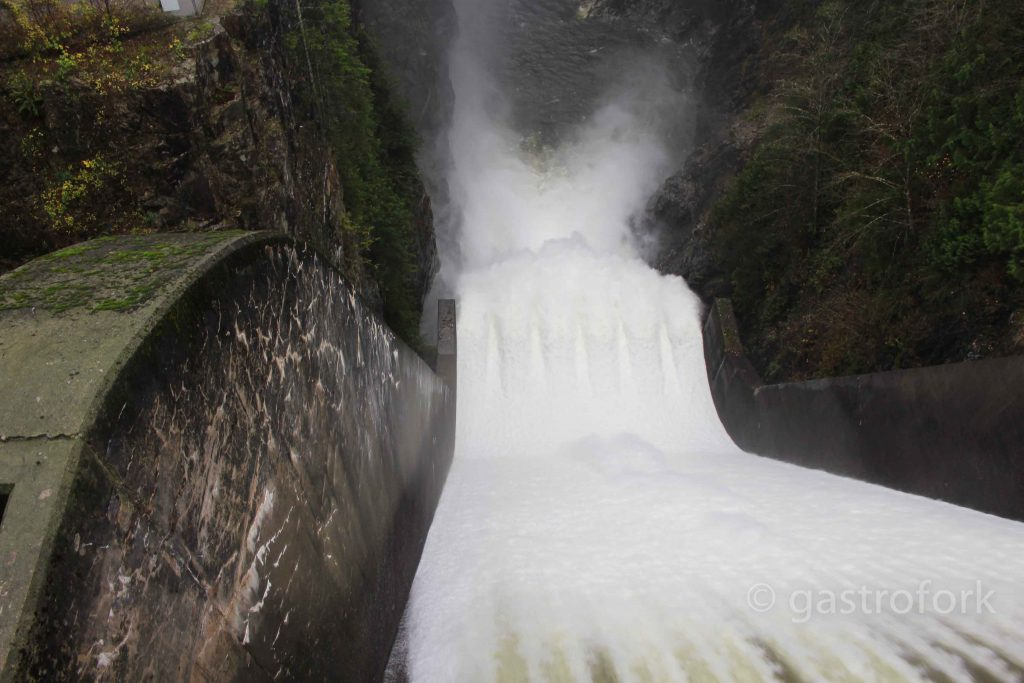 Cleveland Dam, North Vancouver