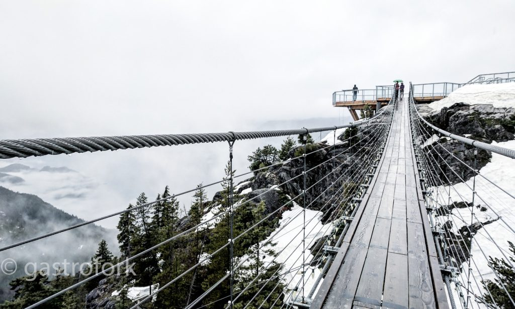 sea to sky gondola sky pilot bridge