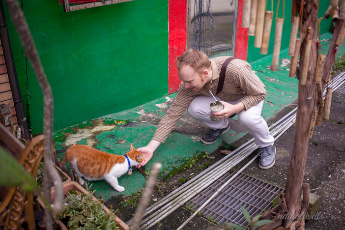 houtong cat village taiwan